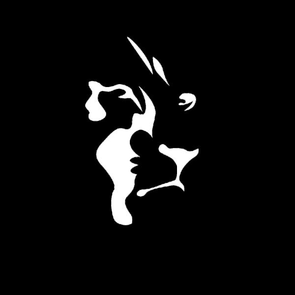 hoofd_leeuw_portfolio